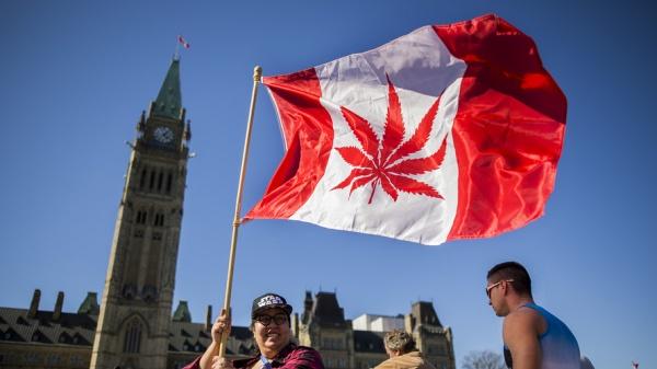 """Kanadada """"arzuların işi""""nə işçi axtarılır"""